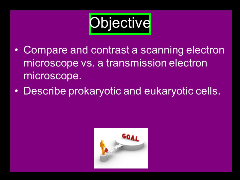 Objective Compare and contrast a scanning electron microscope vs.