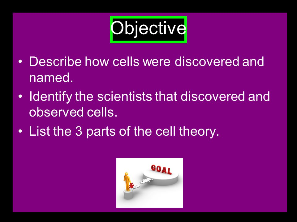 Objective To list and explain the different organelles found in all eukaryotic cells.