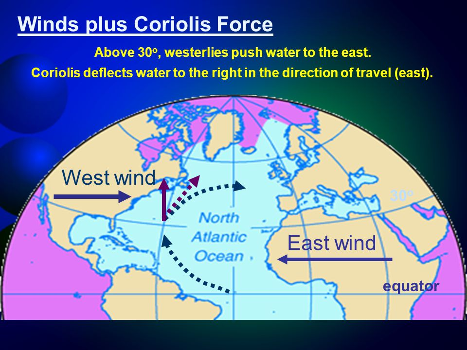 East wind West wind Winds plus Coriolis Force Coriolis deflects water to the right in the direction of travel (east).
