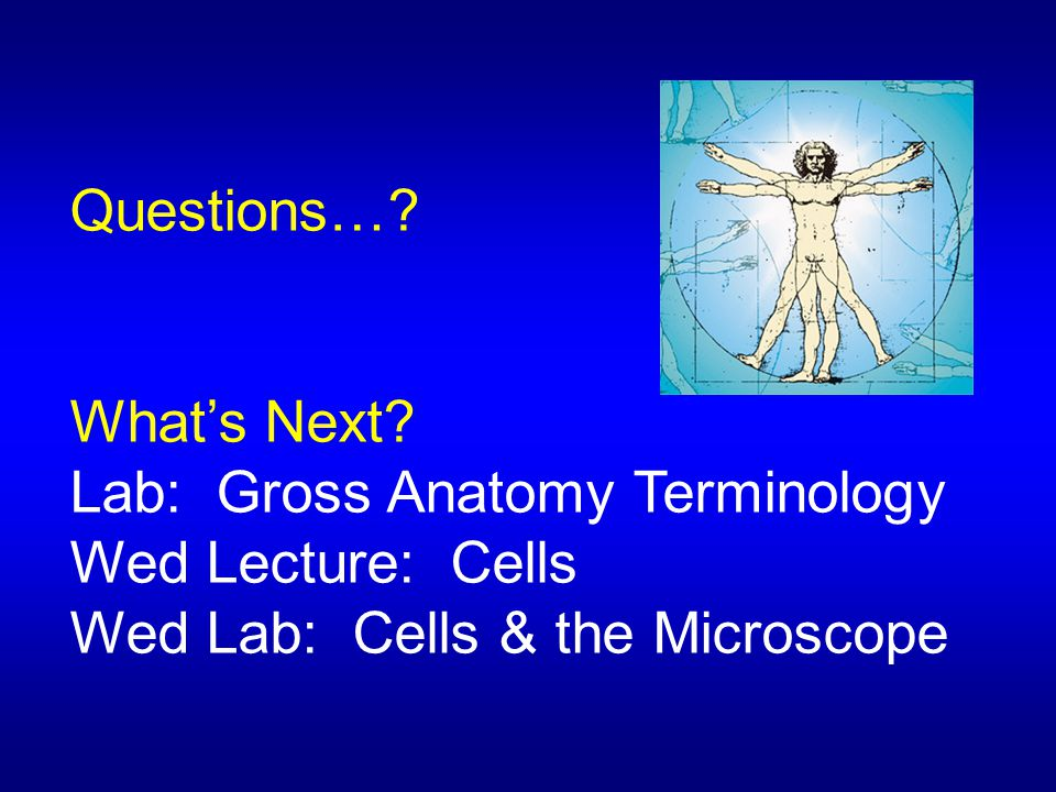 Questions…? What's Next? Lab: Gross Anatomy Terminology Wed Lecture: Cells Wed Lab: Cells & the Microscope