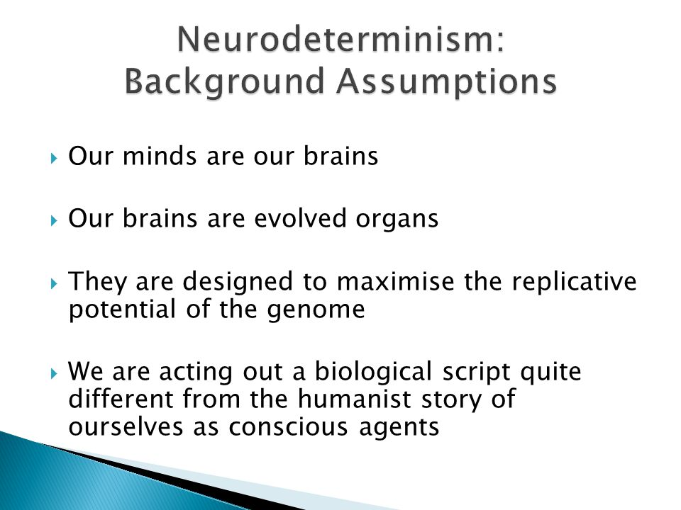  Our minds are our brains  Our brains are evolved organs  They are designed to maximise the replicative potential of the genome  We are acting out a biological script quite different from the humanist story of ourselves as conscious agents