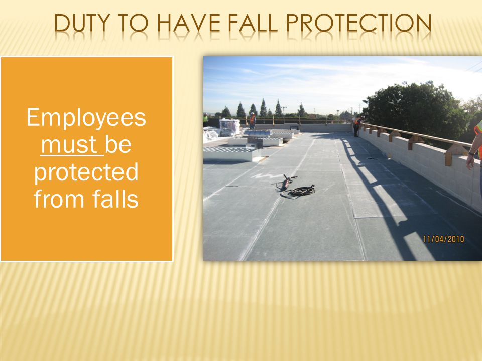 Employees must be protected from falls