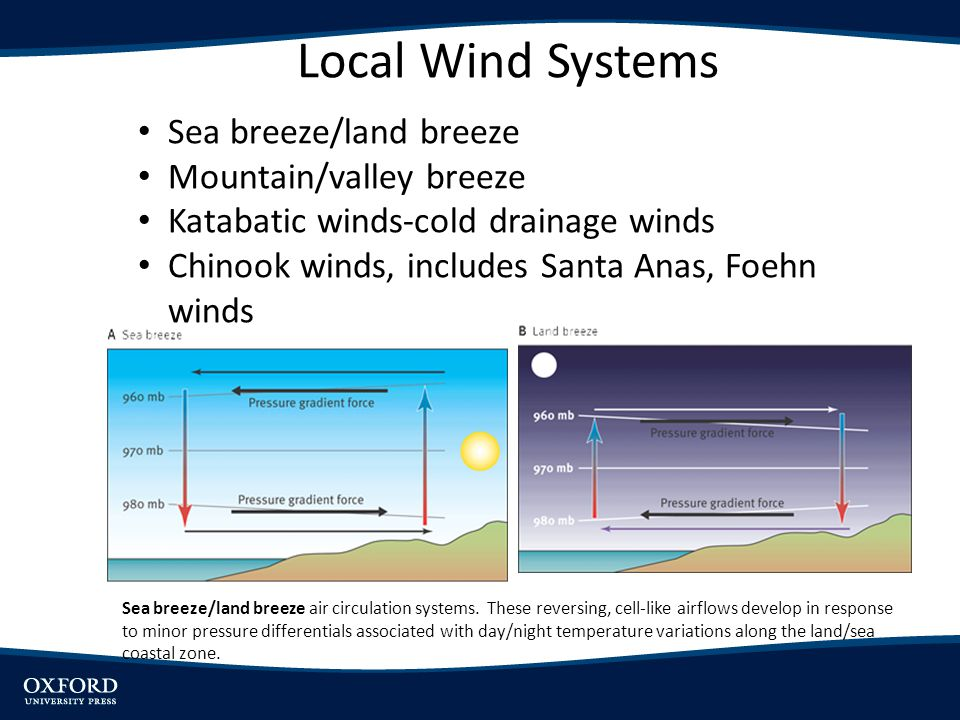 Local Wind Systems Sea breeze/land breeze Mountain/valley breeze Katabatic winds-cold drainage winds Chinook winds, includes Santa Anas, Foehn winds S
