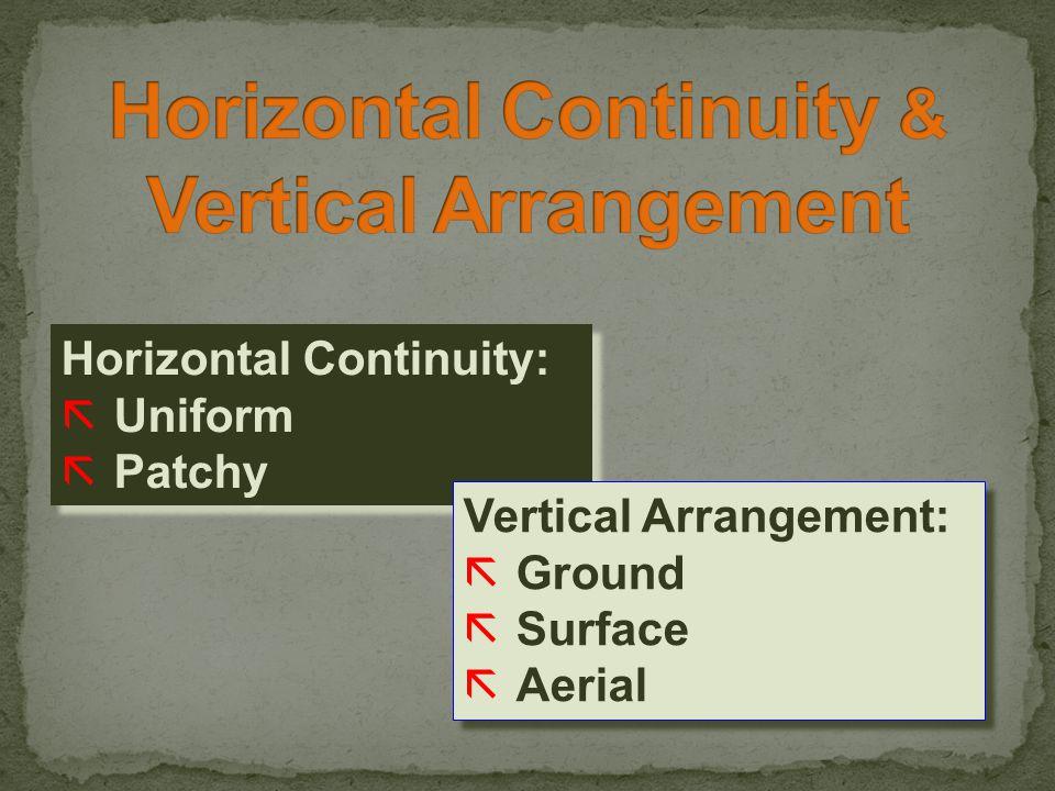 Horizontal Continuity: ãUniform ãPatchy Horizontal Continuity: ãUniform ãPatchy Vertical Arrangement: ãGround ãSurface ãAerial Vertical Arrangement: ãGround ãSurface ãAerial