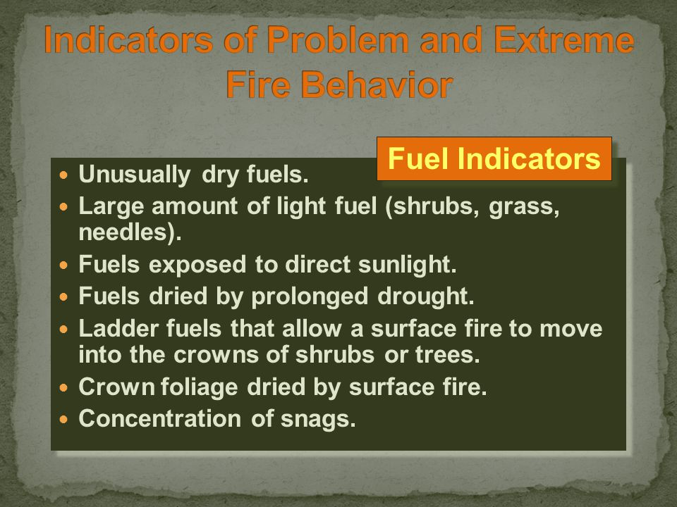 Unusually dry fuels. Large amount of light fuel (shrubs, grass, needles).