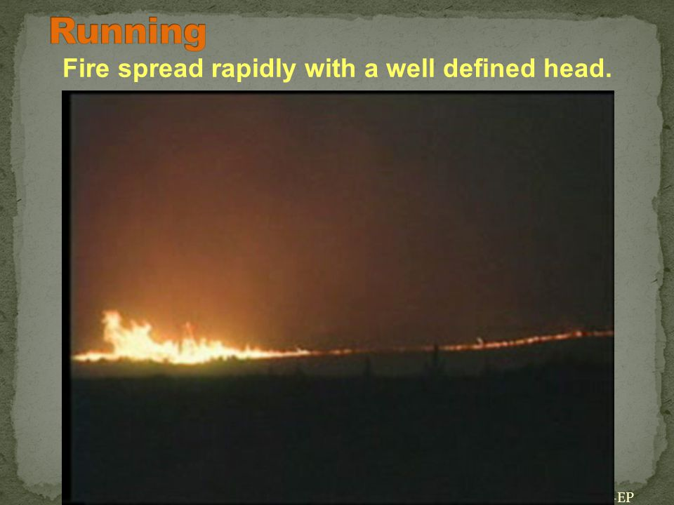 01-24-S190-EP Fire spread rapidly with a well defined head. *Click on image to play video