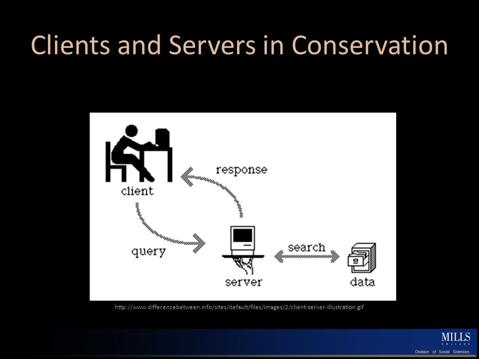 Clients and Servers in Conservation http://www.differencebetween.info/sites/default/files/images/2/client-server-illustration.gif