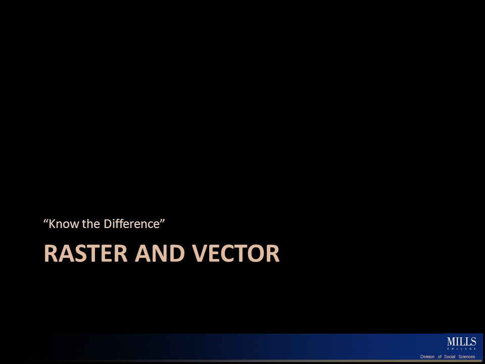 RASTER AND VECTOR Know the Difference