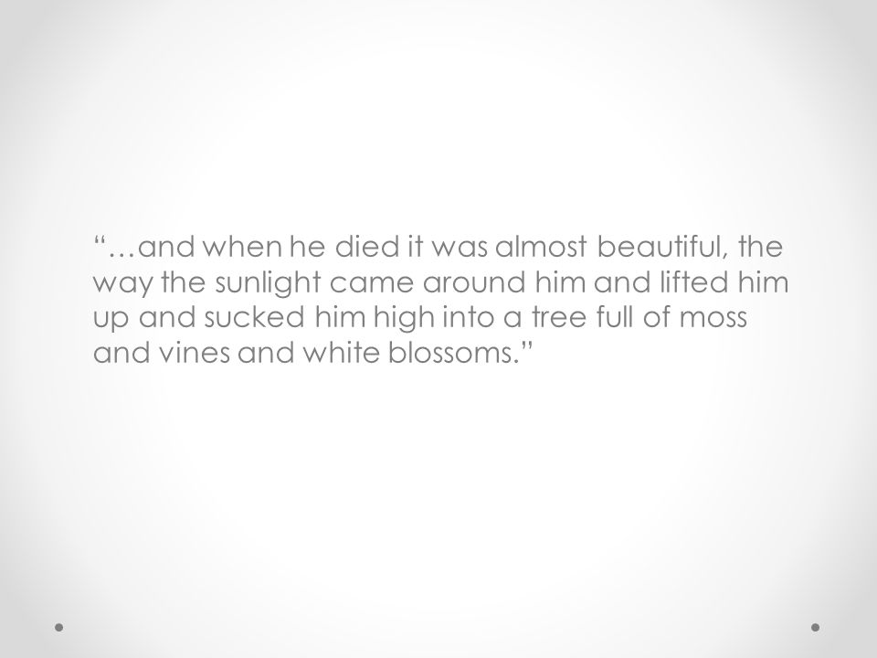 """…and when he died it was almost beautiful, the way the sunlight came around him and lifted him up and sucked him high into a tree full of moss and vi"