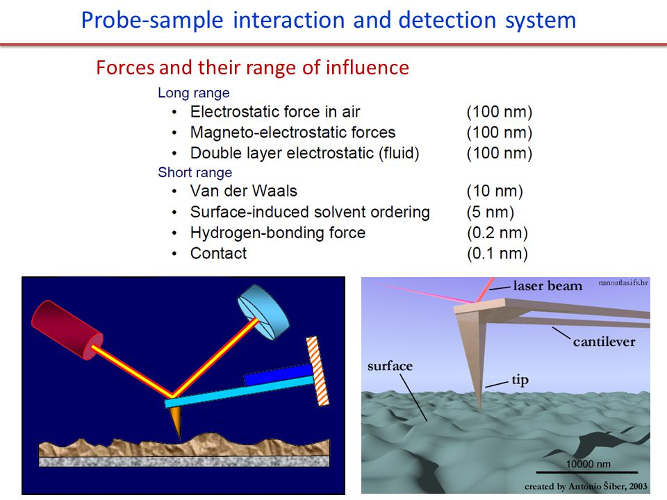 Probe-sample interaction and detection system Forces and their range of influence