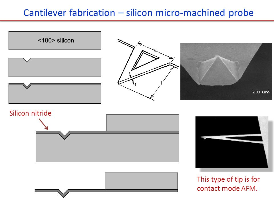 Cantilever fabrication – silicon micro-machined probe Silicon nitride This type of tip is for contact mode AFM.