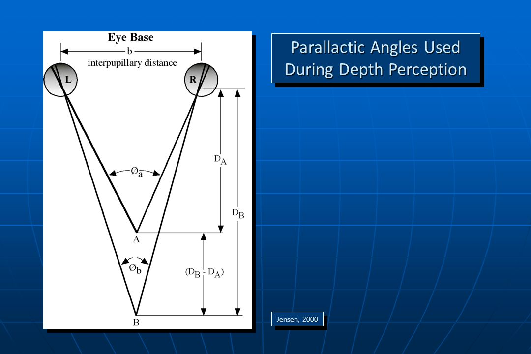 Parallactic Angles Used During Depth Perception Jensen, 2000 0.119 0.119 59.1' 59.1'