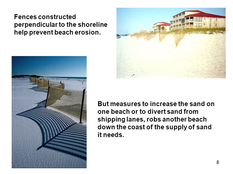 8 Fences constructed perpendicular to the shoreline help prevent beach erosion.