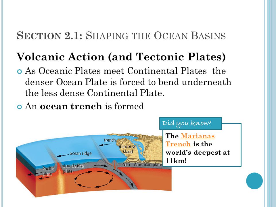 S ECTION 2.1: S HAPING THE O CEAN B ASINS Volcanic Action (and Tectonic Plates) As Oceanic Plates meet Continental Plates the denser Ocean Plate is forced to bend underneath the less dense Continental Plate.