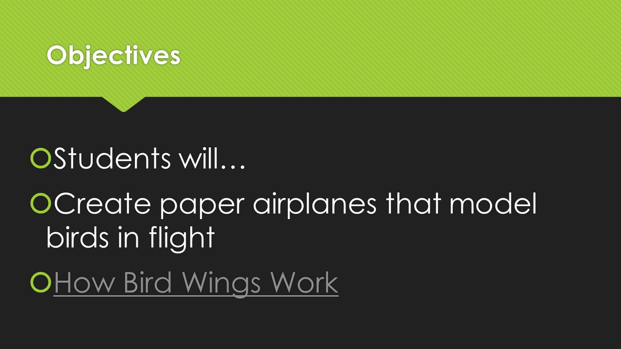 Objectives  Students will…  Create paper airplanes that model birds in flight  How Bird Wings Work How Bird Wings Work  Students will…  Create paper airplanes that model birds in flight  How Bird Wings Work How Bird Wings Work