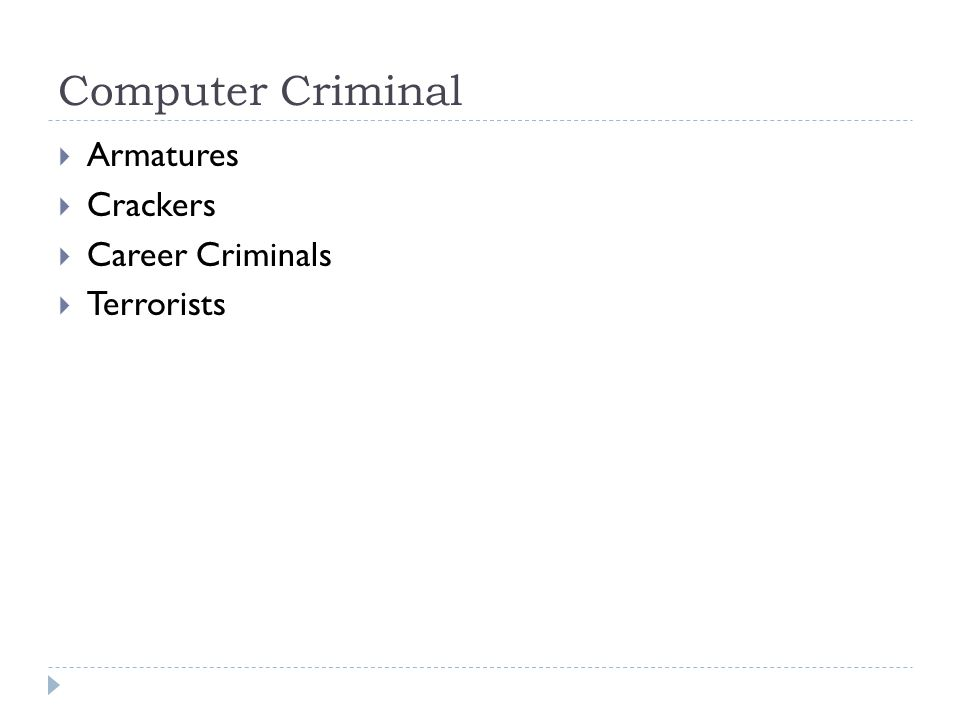 Computer Criminal  Armatures  Crackers  Career Criminals  Terrorists