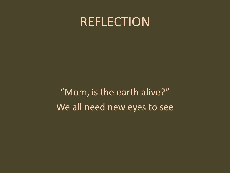 REFLECTION Mom, is the earth alive We all need new eyes to see