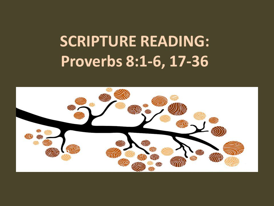 SCRIPTURE READING: Proverbs 8:1-6, 17-36