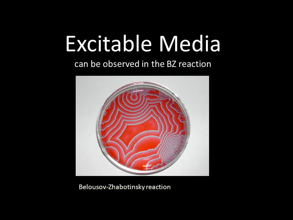 Excitable Media can be observed in the BZ reaction Belousov-Zhabotinsky reaction