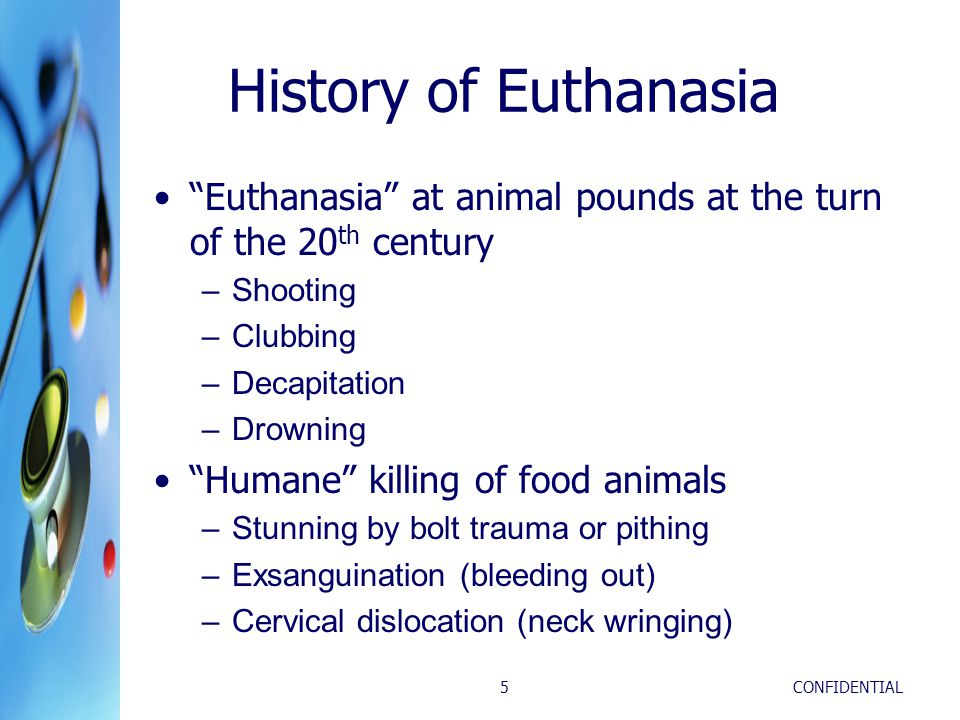 """CONFIDENTIAL5 History of Euthanasia """"Euthanasia"""" at animal pounds at the turn of the 20 th century –Shooting –Clubbing –Decapitation –Drowning """"Humane"""
