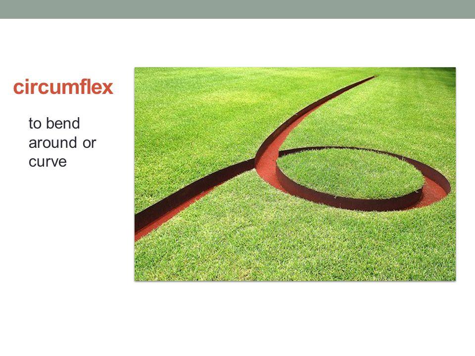 circumflex to bend around or curve