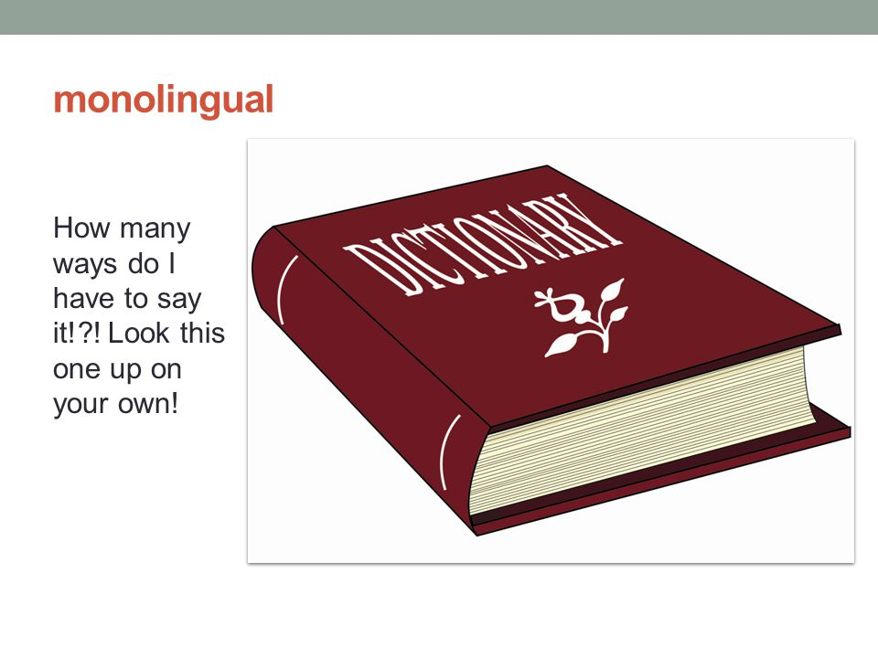 monolingual How many ways do I have to say it!?! Look this one up on your own!