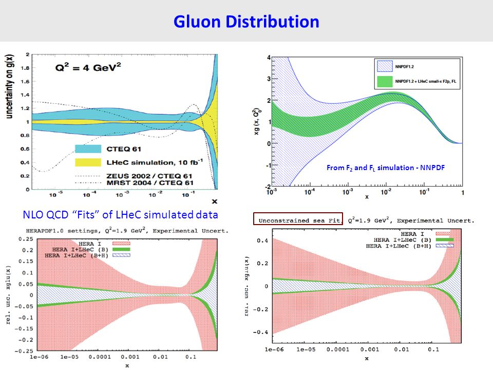 "Gluon Distribution From F 2 and F L simulation - NNPDF NLO QCD ""Fits"" of LHeC simulated data"