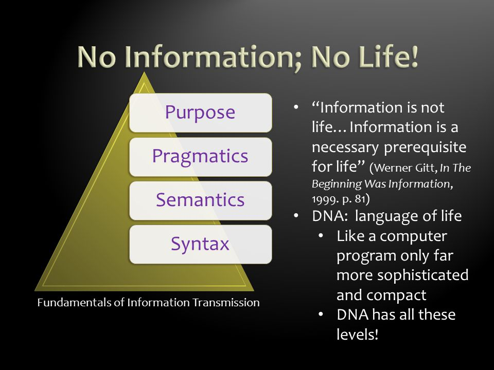 Fundamentals of Information Transmission PurposePragmaticsSemanticsSyntax Information is not life…Information is a necessary prerequisite for life (Werner Gitt, In The Beginning Was Information, 1999.