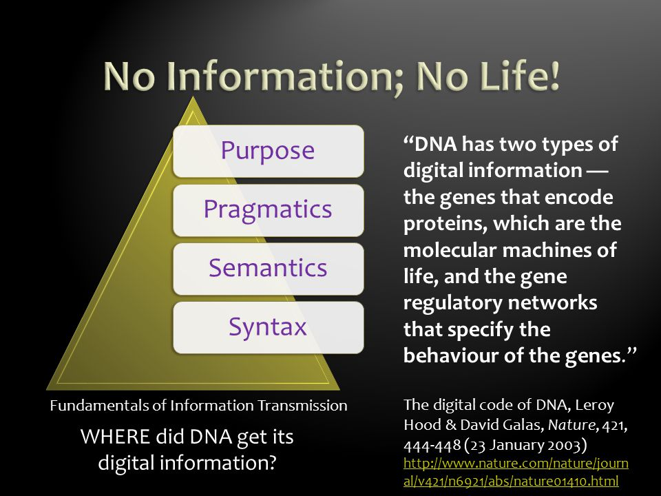 Fundamentals of Information Transmission PurposePragmaticsSemanticsSyntax DNA has two types of digital information — the genes that encode proteins, which are the molecular machines of life, and the gene regulatory networks that specify the behaviour of the genes. The digital code of DNA, Leroy Hood & David Galas, Nature, 421, 444-448 (23 January 2003) http://www.nature.com/nature/journ al/v421/n6921/abs/nature01410.html http://www.nature.com/nature/journ al/v421/n6921/abs/nature01410.html WHERE did DNA get its digital information