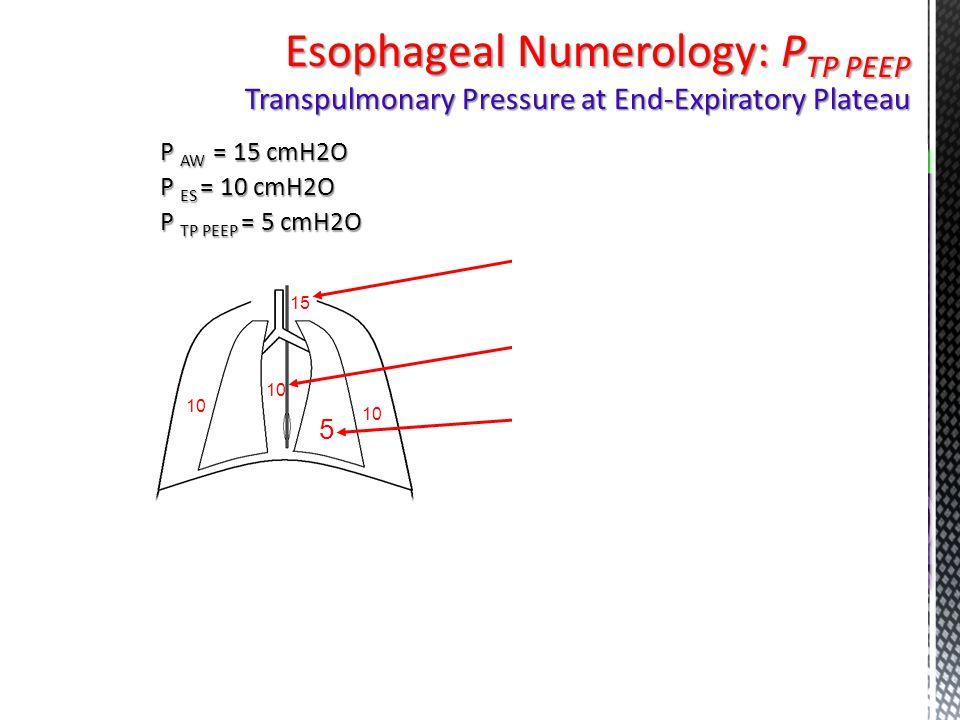 P AW = 15 cmH2O P ES = 10 cmH2O P TP PEEP = 5 cmH2O 10 15 5 10 Esophageal Numerology: P TP PEEP Transpulmonary Pressure at End-Expiratory Plateau