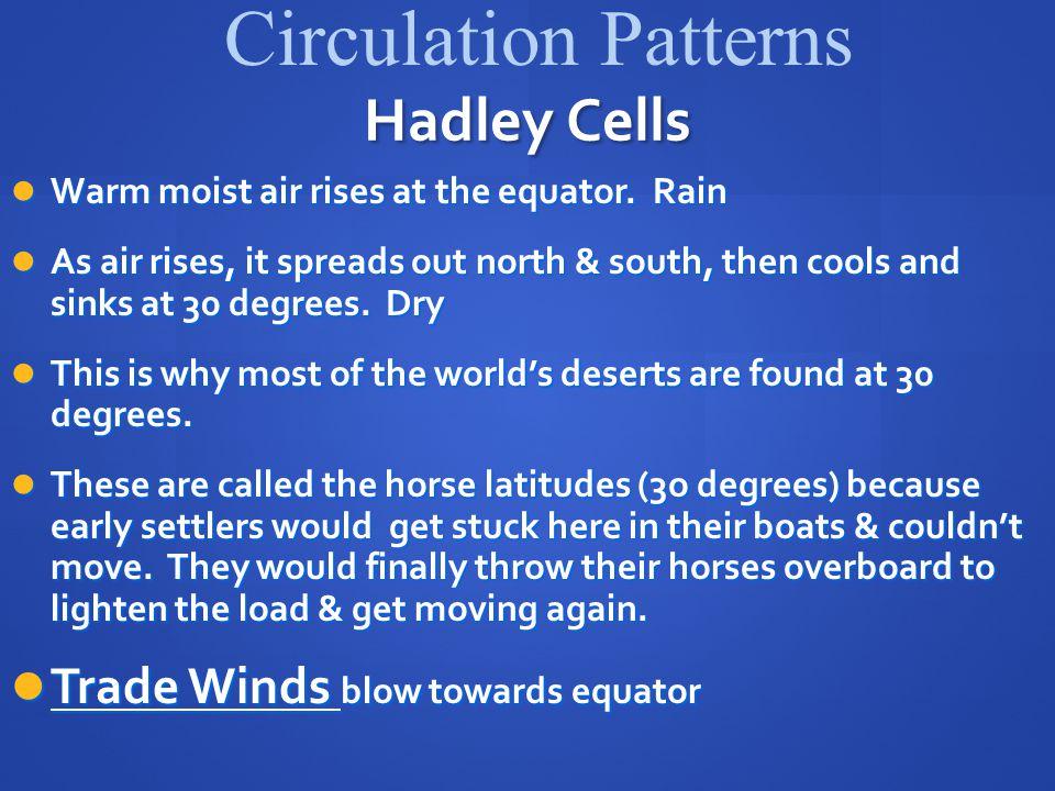 Hadley Cells Warm moist air rises at the equator.Rain Warm moist air rises at the equator.