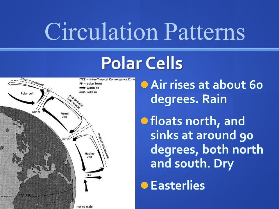 Polar Cells Air rises at about 60 degrees.Rain Air rises at about 60 degrees.