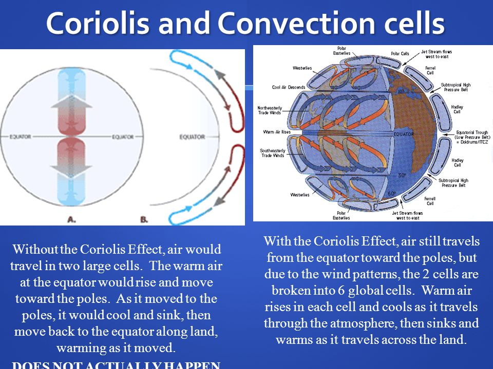 Coriolis and Convection cells Without the Coriolis Effect, air would travel in two large cells.