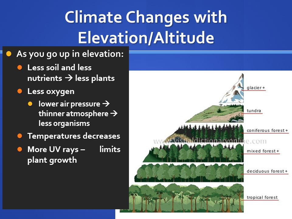 Climate Changes with Elevation/Altitude As you go up in elevation: As you go up in elevation: Less soil and less nutrients  less plants Less soil and less nutrients  less plants Less oxygen Less oxygen lower air pressure  thinner atmosphere  less organisms lower air pressure  thinner atmosphere  less organisms Temperatures decreases Temperatures decreases More UV rays – limits plant growth More UV rays – limits plant growth