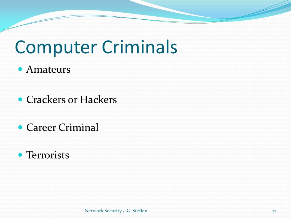 Computer Criminals Amateurs Crackers or Hackers Career Criminal Terrorists Network Security / G. Steffen17