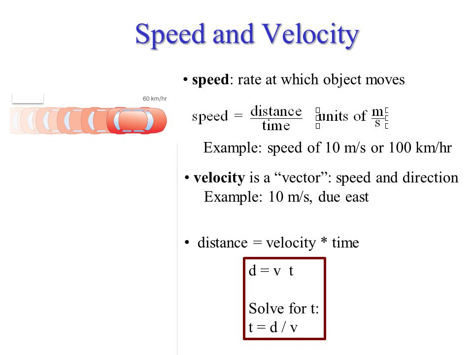 Speed and Velocity speed: rate at which object moves velocity is a vector : speed and direction Example: 10 m/s, due east distance = velocity * time Example: speed of 10 m/s or 100 km/hr d = v t Solve for t: t = d / v