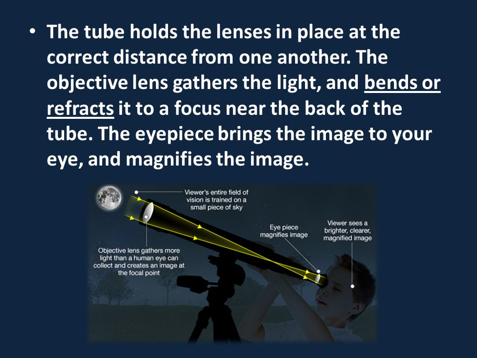The tube holds the lenses in place at the correct distance from one another. The objective lens gathers the light, and bends or refracts it to a focus