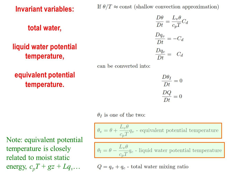 Invariant variables: total water, liquid water potential temperature, equivalent potential temperature.