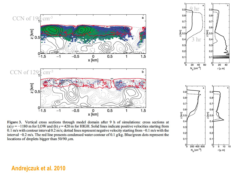 Andrejczuk et al. 2010 CCN of 190 cm -3 CCN of 1295 cm -3 9 hr 3 hr
