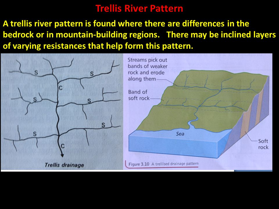 Trellis River Pattern A trellis river pattern is found where there are differences in the bedrock or in mountain-building regions. There may be inclin
