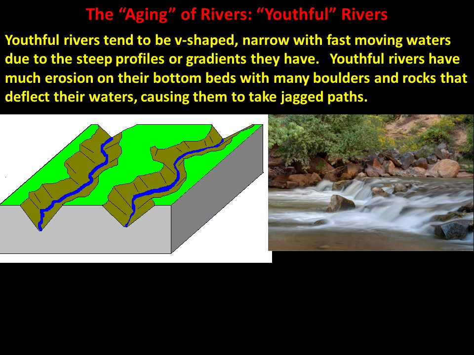 """The """"Aging"""" of Rivers: """"Youthful"""" Rivers Youthful rivers tend to be v-shaped, narrow with fast moving waters due to the steep profiles or gradients th"""