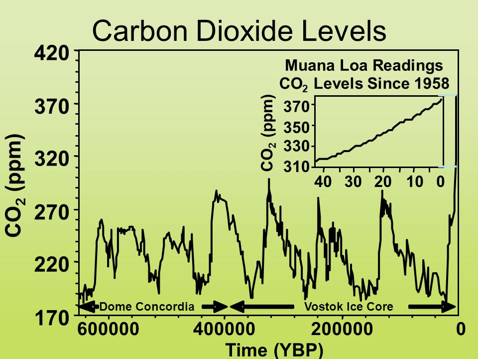 170 220 270 320 370 420 200000400000600000 Time (YBP) CO 2 (ppm) Vostok Ice CoreDome Concordia Carbon Dioxide Levels 0 Muana Loa Readings CO 2 Levels Since 1958 310 330 350 370 10203040 CO 2 (ppm) 0
