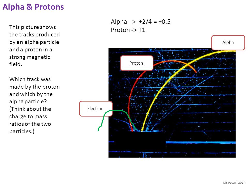 Mr Powell 2014 Alpha & Protons This picture shows the tracks produced by an alpha particle and a proton in a strong magnetic field. Which track was ma