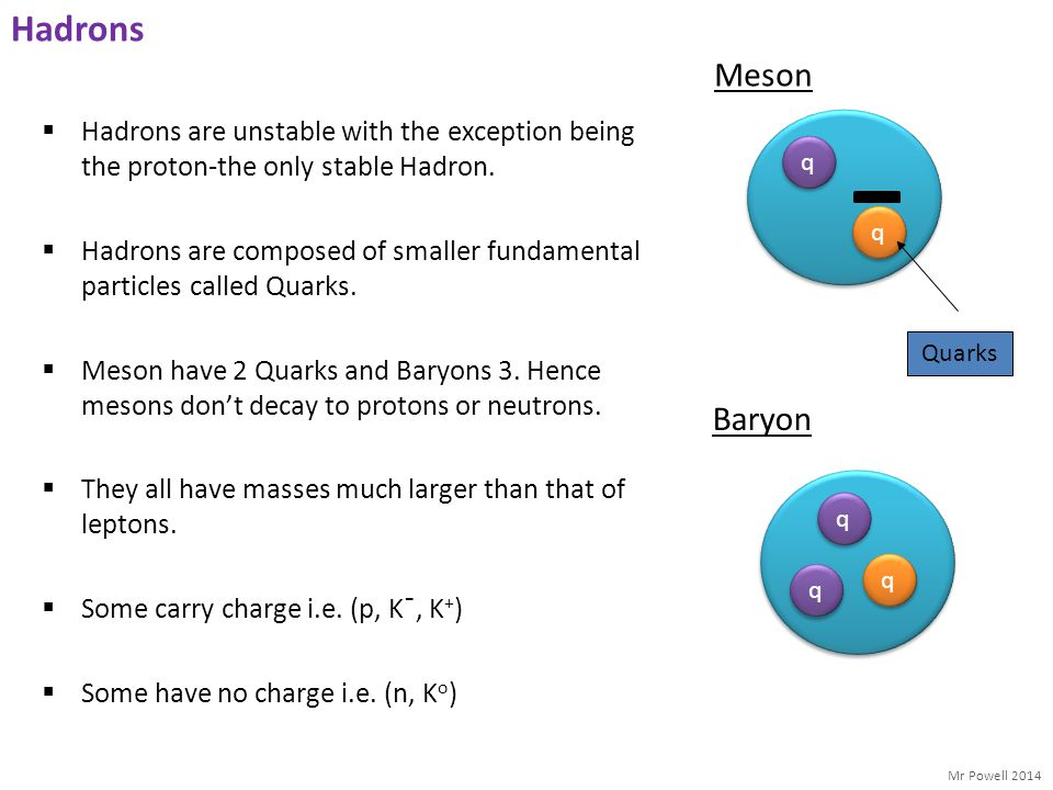 Mr Powell 2014 Hadrons  Hadrons are unstable with the exception being the proton-the only stable Hadron.  Hadrons are composed of smaller fundamenta