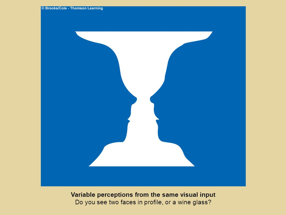 Variable perceptions from the same visual input Do you see two faces in profile, or a wine glass