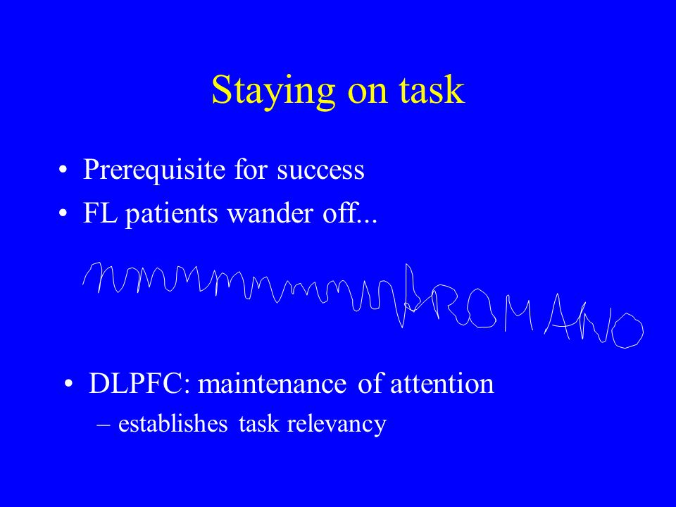 Staying on task Prerequisite for success FL patients wander off... DLPFC: maintenance of attention –establishes task relevancy