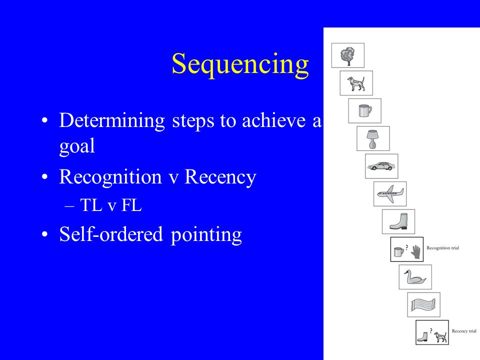 Sequencing Determining steps to achieve a goal Recognition v Recency –TL v FL Self-ordered pointing