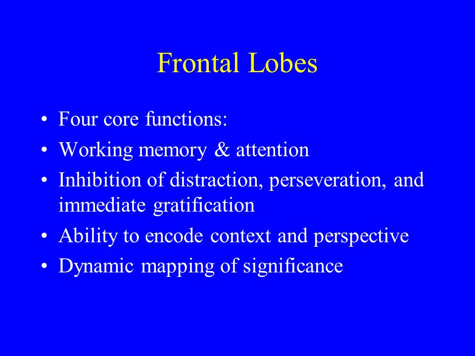 Frontal Lobes Four core functions: Working memory & attention Inhibition of distraction, perseveration, and immediate gratification Ability to encode context and perspective Dynamic mapping of significance