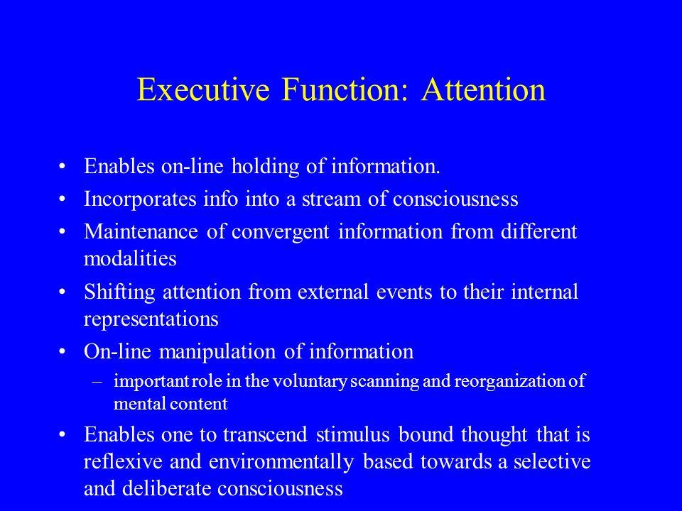 Theoretical accounts Feedback utilization (Luria) Inhibition (Dias, 1996; Diamond, 1989) Working memory (Goldman-Rakic, 1987; Kimberg & Farah, 1993) Scripts & managerial knowledge units (MKU; Grafman, 1989) Supervisory Attention (Norman & Shallice, 1986; Stuss et al, 1995)