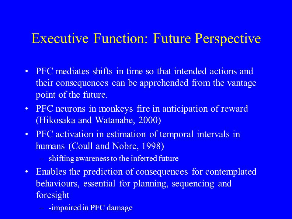 ab c c E I C M L Sustaining Attention a.Energize task schema b.